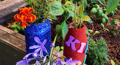 Bottles that have been up-cycled into flower vases