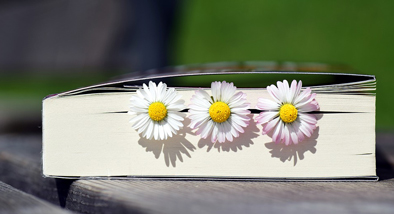 daisies inserted into a book