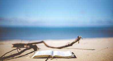 An open book lies on the sand alongside driftwood with calm soft focus ocean in the background.