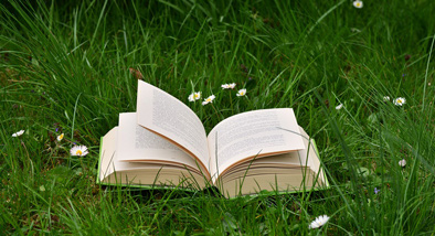 open book lying on grass