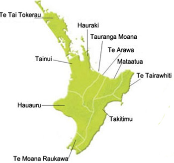 Map of iwi in North Island New Zealand.