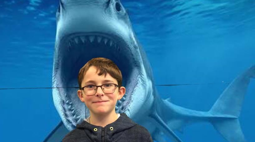 boy standing in front of shark